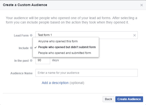 lead ad engagement custom audience options facebook